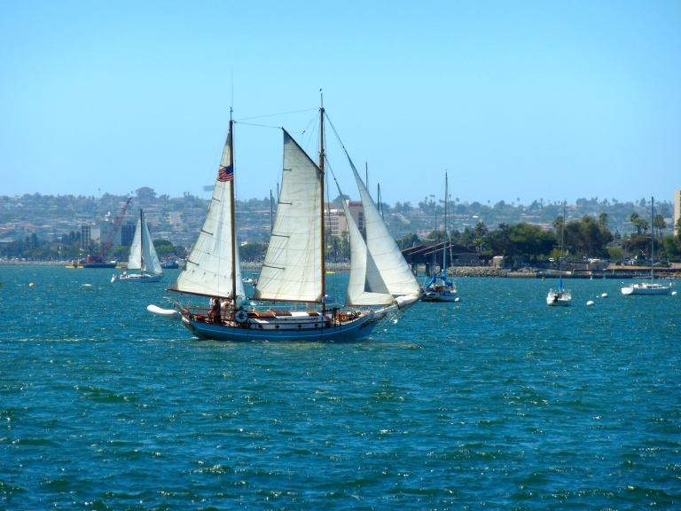 Festival of Sail Day 2