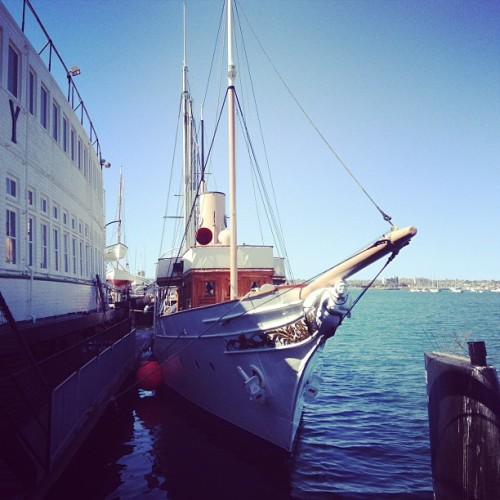 Medea soaking in that #sandiego sun! #museum #boats
