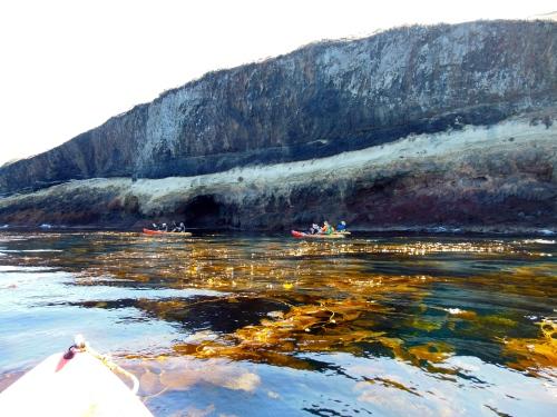 Kayaking Catalina