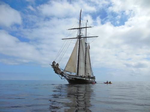 Californian Sailing to Catalina